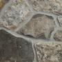 Quartzite Ledge - Oyster Shell